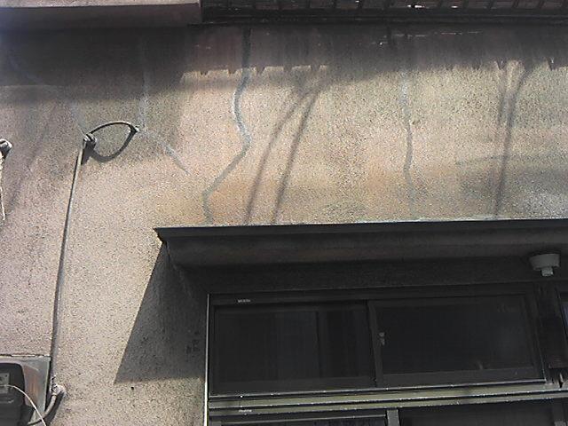 本日の壁劣化美