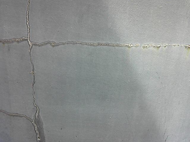壁劣化美(4)