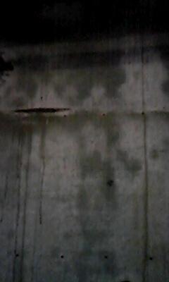 今日の壁(2)