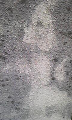 豊田から今日の壁